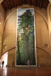 L'arbre géant de Nick Nichols, 18 mètres de haut, exposé en 2010 à l'église des Dominicains.